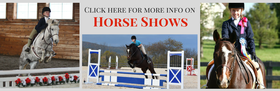 VHSA Assoc. Hunter/ Jumper Shows
